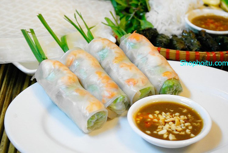 Máy Cuốn Nem,Cuốn Chả Việt NanoFresh 4 trong 1