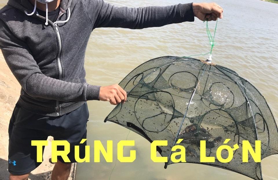 Lưới Bát Quái Bắt Cá, Tôm, Cua, Lươn, Trạch