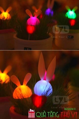 Đèn trồng cây cảm ứng ánh sáng